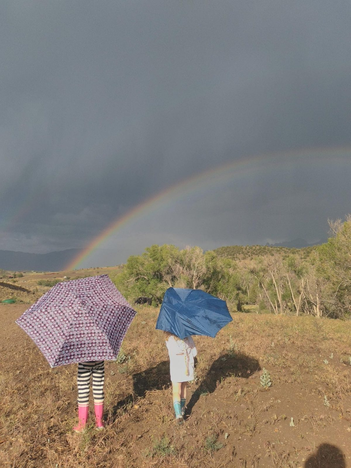 Two children with umbrellas under a rainbow